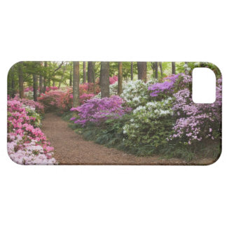 USA, Georgia, Pine Mountain. A pathway through iPhone SE/5/5s Case