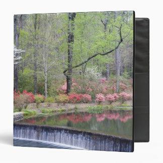 USA, Georgia, Pine Mountain. A small waterfall Binder