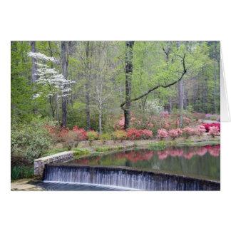 USA, Georgia, Pine Mountain. A small waterfall Greeting Cards