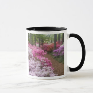 USA; Georgia; Pine Mountain. Azaleas at 2 Mug