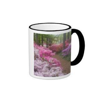 USA; Georgia; Pine Mountain. Azaleas at 2 Ringer Mug