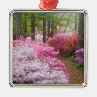 USA; Georgia; Pine Mountain. Azaleas at Metal Ornament