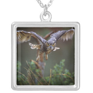 USA, Georgia, Pine Mountain, Callaway Gardens. Silver Plated Necklace