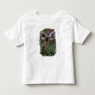 USA, Georgia, Pine Mountain, Callaway Gardens. Toddler T-shirt