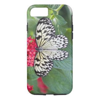 USA, Georgia, Pine Mountain. Paper Kite iPhone 7 Case