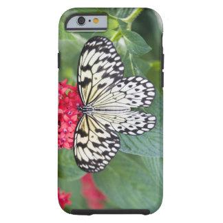 USA, Georgia, Pine Mountain. Paper Kite Tough iPhone 6 Case