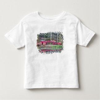 USA, Georgia, Pine Mountain. Viewing area by Toddler T-shirt