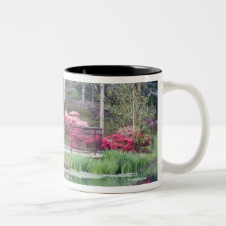USA, Georgia, Pine Mountain. Viewing area by Two-Tone Coffee Mug
