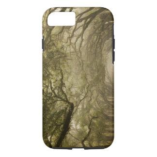 USA, Georgia, Savannah, An oak lined drive in iPhone 7 Case