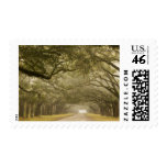 USA, Georgia, Savannah, An oak lined drive in Stamp