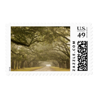 USA, Georgia, Savannah, An oak lined drive in Postage Stamps