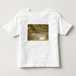USA, Georgia, Savannah, An oak lined drive in Toddler T-shirt