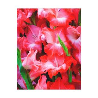 USA, Georgia, Savannah, Bouquet Of Gladiolus Canvas Print