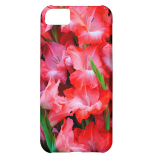 USA, Georgia, Savannah, Bouquet Of Gladiolus Case For iPhone 5C
