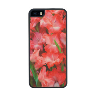 USA, Georgia, Savannah, Bouquet Of Gladiolus Carved® Maple iPhone 5 Case