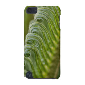 USA, Georgia, Savannah, Close-Up Of New Fronds iPod Touch 5G Cover