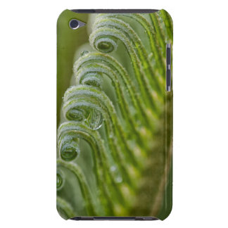 USA, Georgia, Savannah, Close-Up Of New Fronds iPod Touch Case