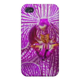 USA, Georgia, Savannah, Close-Up Of Orchid Cover For iPhone 4
