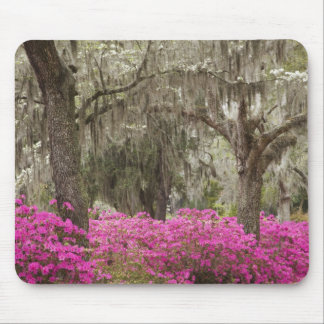 USA, Georgia, Savannah, Spring at Historic Mouse Pad