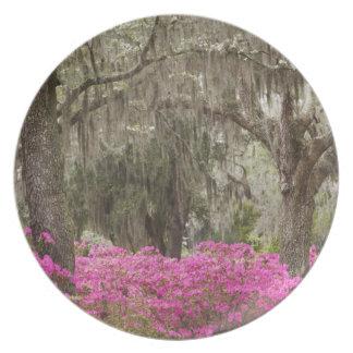 USA, Georgia, Savannah, Spring at Historic Plate