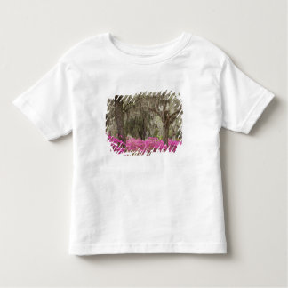 USA, Georgia, Savannah, Spring at Historic Toddler T-shirt