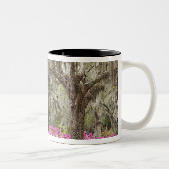 USA, Georgia, Savannah, Spring at Historic Two-Tone Coffee Mug