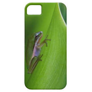 USA, Georgia, Savannah, Tiny Frog On A Leaf iPhone SE/5/5s Case