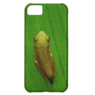 USA, Georgia, Savannah, Tiny Frog On Leaf Cover For iPhone 5C
