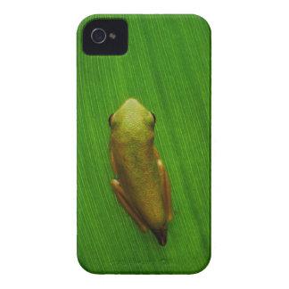 USA, Georgia, Savannah, Tiny Frog On Leaf Case-Mate iPhone 4 Case