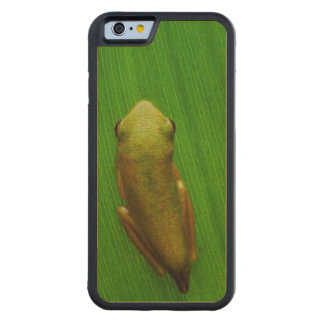 USA, Georgia, Savannah, Tiny Frog On Leaf Carved® Maple iPhone 6 Bumper Case