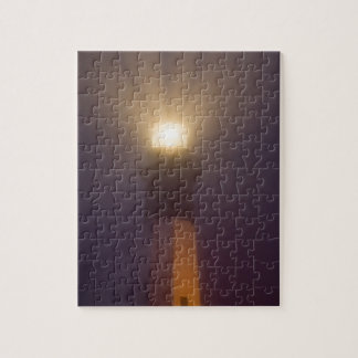 USA; Georgia; Savannah.  Tybee Island Lighthouse Puzzle
