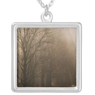 USA Great Smoky Mountain NP Tennessee trees in Silver Plated Necklace