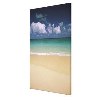 USA, Hawaii. Beach scene Canvas Print