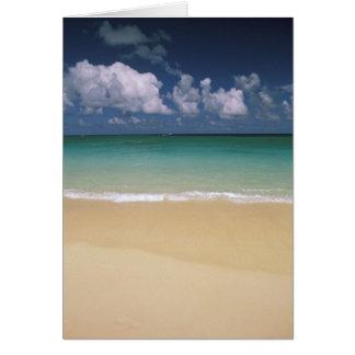 USA, Hawaii. Beach scene Greeting Card