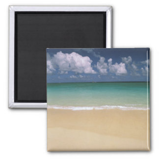 USA, Hawaii. Beach scene Magnet