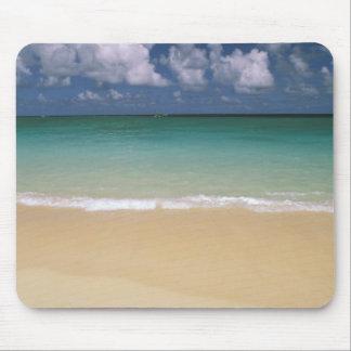USA, Hawaii. Beach scene Mouse Pad