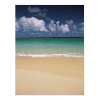 USA, Hawaii. Beach scene Postcard