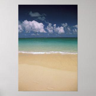 USA, Hawaii. Beach scene Poster