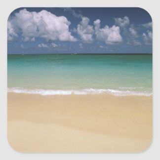 USA, Hawaii. Beach scene Square Sticker