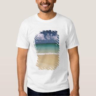 USA, Hawaii. Beach scene T-Shirt