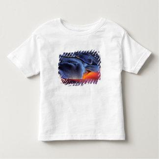 USA, Hawaii, Big Island, Kilauea, Volcanoes NP, T-shirt