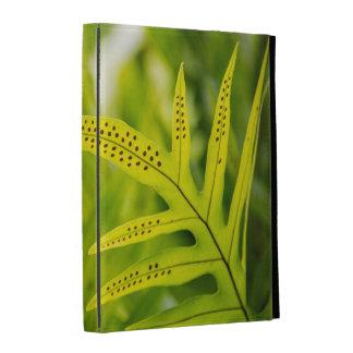USA, Hawaii, Big Island. Tropical Green Fern iPad Case