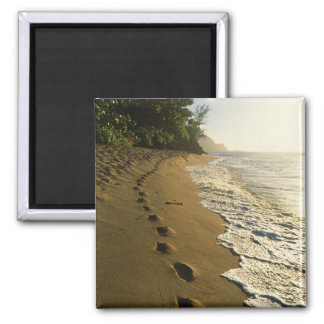 USA, Hawaii, Hanalei. Footprints in sand. 2 Inch Square Magnet
