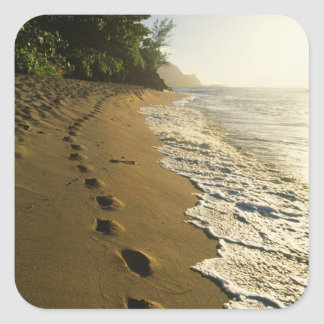 USA, Hawaii, Hanalei. Footprints in sand. Square Sticker