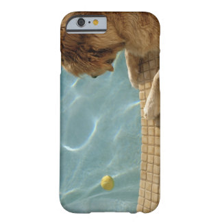 USA, Hawaii, Honolulu. Barely There iPhone 6 Case