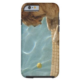 USA, Hawaii, Honolulu. Tough iPhone 6 Case