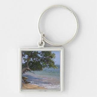 USA, Hawaii, Kauai, beach scenic. RF) Keychain
