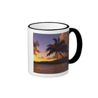 USA, Hawaii, Kauai, Colorful sunrise in a 2 Coffee Mug