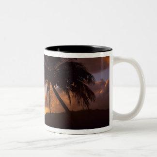 USA, Hawaii, Kauai, Colorful sunrise in a 2 Mug
