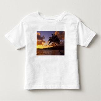 USA, Hawaii, Kauai, Colorful sunrise in a 2 Tee Shirts